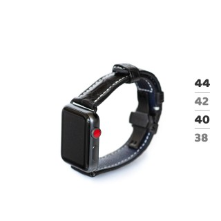 PW66 watch band